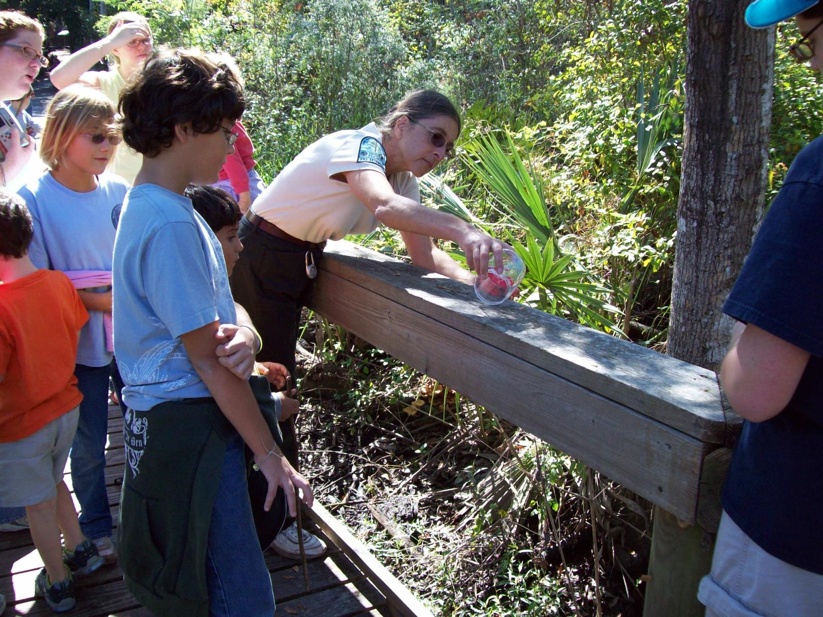 Volunteer naturalist collect a creature on a boardwalk in front of kids