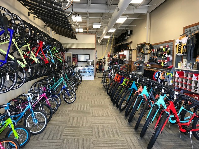 Open Road Bicycles Oakleaf